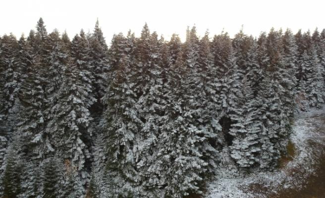 Sinop'a yılın ilk karı düştü, kartpostallık görüntüler ortaya çıktı