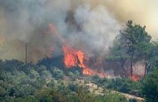 Osmaniye'de çıkan orman yangını devam ediyor