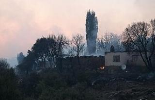 Ahmetli'deki orman yangınının hasar tespit çalışmaları...