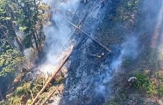Artvin'deki orman yangını 3 gündür devam ediyor