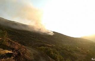 Elazığ'daki orman yangını 30 saatte kontrol...