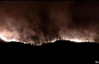 Hatay'da yeniden alevlenen orman yangını sürüyor