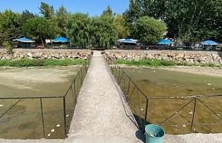 İznik Gölü'nde korkutan çekilme: İskele var...