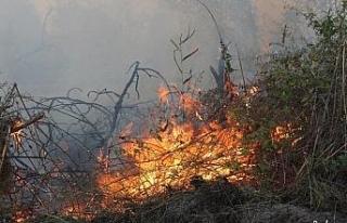Kuş cennetinde çıkan yangını söndürme çalışmaları...