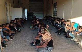 Van'da 17 kişilik minibüste 65 kaçak göçmen...