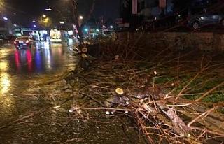 Bağdat Caddesi'nde şiddetli sağanak ve rüzgar...