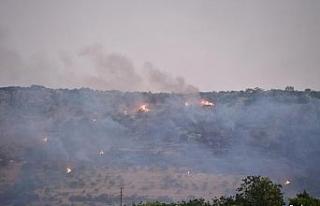 Gaziantep'te çıkan orman yangını kontrol altına...