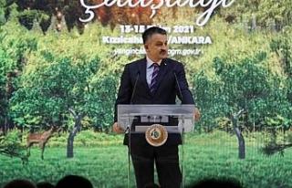 """""""Anayasamız söyler, 'Yanan alanlar tekrar ağaçlandırılır..."""