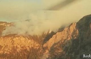 Antalya'daki yangına havadan ve karadan müdahale...
