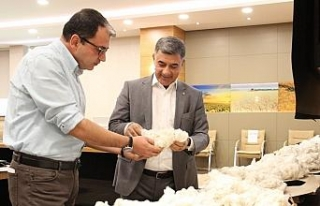 Diyarbakır Ticaret Borsası'nda online pamuk alım...