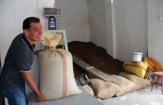 Fındık fiyatı serbest piyasada yükselişini sürdürüyor