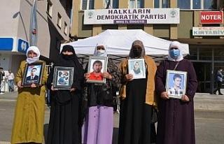 Muş'ta gözü yaşlı ailelerin HDP önündeki...