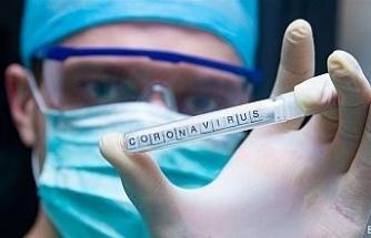 Japon araştırmacılardan Covid-19 tedavisinde umut olacak çalışma