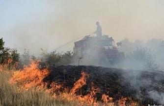 Bulgaristan'da yangınlar nedeniyle 4 ilçede felaket durumu ilan edildi