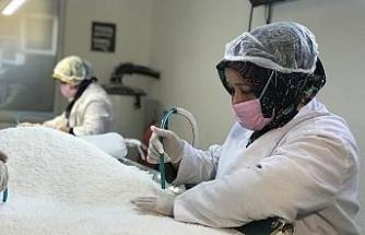 Mineral deposu Delice tuzu, 3 yılda dünyaya adını duyurdu: 9 ülkeye ihraç ediliyor