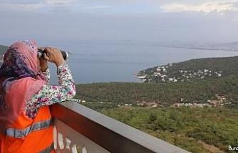 İstanbul ormanları 15 yıldır Büyükada'dan Hatun ablaya emanet