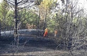 Kütahya'daki orman yangını kontrol altına alındı