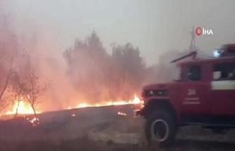 Ukrayna'da orman yangını: 4 ölü, 10 yaralı