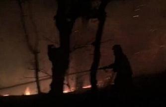 Amasya'da samanlıkta çıkan yangın ormanlık alana sıçradı
