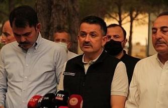 """Tarım ve Orman Bakanı Pakdemirli: """"Manisa Soma yangını kontrol altına alındı"""""""