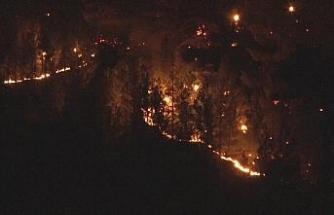 """Vali Günaydın: """"Yangın kontrol altına alındı, soğutma çalışmaları devam ediyor"""""""
