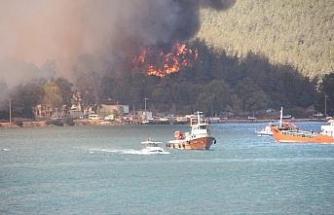 Yangında 80 hektar orman kül oldu