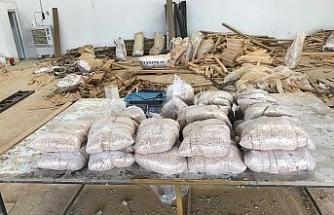 Şanlıurfa'da 590 bin uyuşturucu hap ele geçirildi