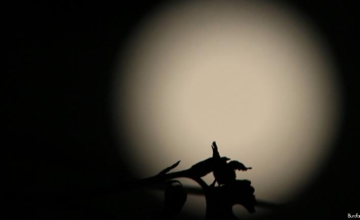 Elazığ semalarında dolunayın görsel şöleni