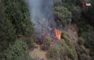 KKTC'de korkutan orman yangını
