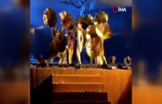 Sahnedeki sanatçılara bıçaklı saldırı: 4 yaralı
