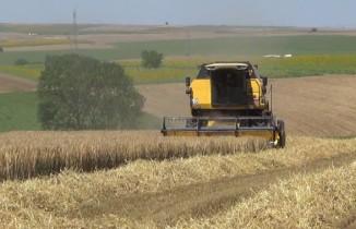 Silivri'de üreticilere 10 milyonluk tohum desteği