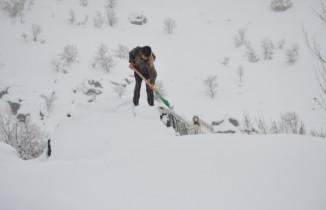 Şırnak'ta ev ve araçlar kar altında kayboldu