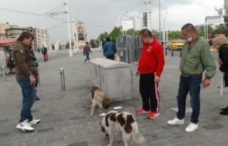 Vatandaşlar ayağı kırılan köpek için seferber oldu