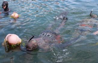 Yalovalı zıpkıncılar bu kez deniz canlıları için daldı