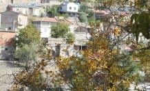 Koramaz'da renk cümbüşü