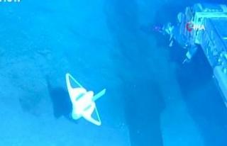 Derin denizleri gözlemleyebilmek için yumuşak robot...