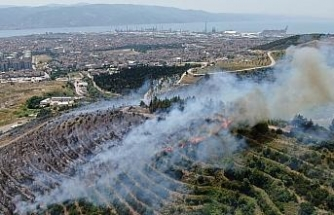 Çevreyi temizlemek isterken 20 dönümlük ormanı yaktı