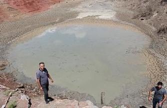 Kuraklık hat safhaya ulaştı, 10 bin balık için köy halkı seferber oldu