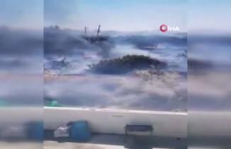 Güney Kıbrıs'ta yangın: 300 hektar orman zarar gördü
